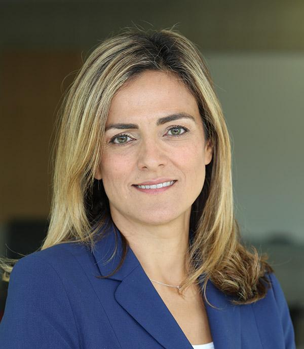 Özgür Arslan-Ayaydin, Clinical Professor of Finance