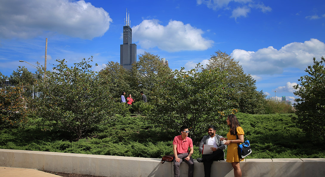 Undergraduate students sitting outside on campus with the Willis Tower in the background